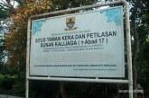 Kisah 99 Kera Penjaga Situs Sunan Kalijaga di Cirebon
