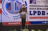 Manfaatkan Dana Bergulir, LPDB Dorong KUKM Lampung Jemput Bola