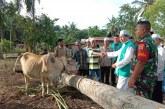 Berakhir di Lampung, Parmusi Resmikan 4 Desa Madani di Pedalaman Sumatera