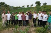 Petani Jagung Program Alternatif Development di Bireuen Berharap Bantuan Air dari Pemerintah