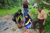 Kurangi Pemanasan Global, SMPN 04 Tenggarong Tanam Pohon