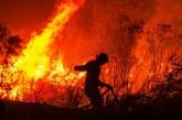 Kebakaran Hutan di Palangkaraya Sulit Dipadamkan!