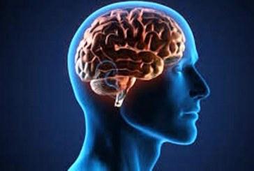 Inilah Penyebab Otak Kita Sering Lupa!
