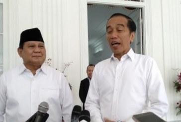 Jokowi Instruksikan Normalisasi Jalan yang Terdampak Banjir