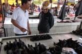 Awas! Makan Daging Kelelawar Mengandung Virus Corona