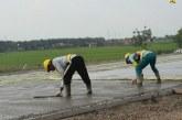 Diancam Covid-19, Kementerian PUPR Lindungi Hak-hak Pekerja Konstruksi