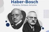 Fritz Haber dan Carl Bosch Penemu Amoniak