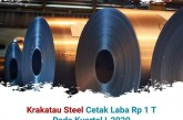 Pertama Dalam 8 Tahun Terakhir, Krakatau Steel Peroleh Laba