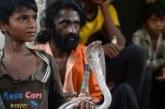 Lebih Satu Juta Orang di India Tewas Digigit Ular