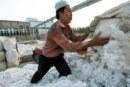 Langgar HAM Muslim Uighur, Ekspor China Diblokir AS