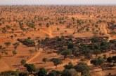 Menakjubkan! Ditemukan Ratusan Juta Pohon di Gurun Pasir Sahara