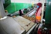 Perkuat Ekonomi Nasional, UMKM Harus Dilibatkan Dalam Rantai Pasok