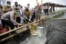 FOTO Warga Desa Lemo Panen Ikan Bandeng