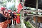 Menarik Nih! Kemenag Aceh Tenggara Kembangkan Wakaf Produktif Penggemukan Sapi