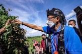 Sandiaga Berharap Kampung Agrinex Mampu Hasilkan Produk Pertanian yang Unggul