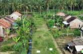 Kementerian ATR/BPN Tingkatkan  Kewirausahaan Perempuan Melalui Kampung Reforma Agraria