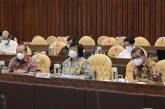 Komisi IV DPR RI Soroti Dana Alokasi Khusus Bidang Lingkungan dan Kehutanan TA 2022