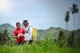 BRI Bagikan 5 Tips agar Para Petani Mudah Dapat Akses Pembiayaan