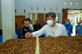 Ini Upaya Kemenperin Tingkatkan Kesejahteraan Petani Tembakau